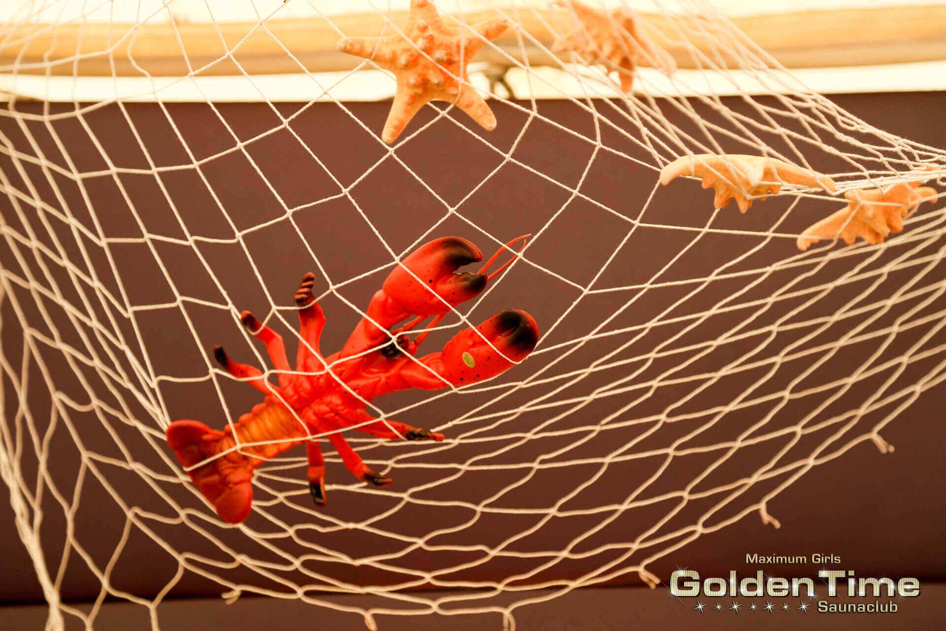 havanna-summer-goldentime-fkk-saunaclub-(187-von-209)-web.jpg