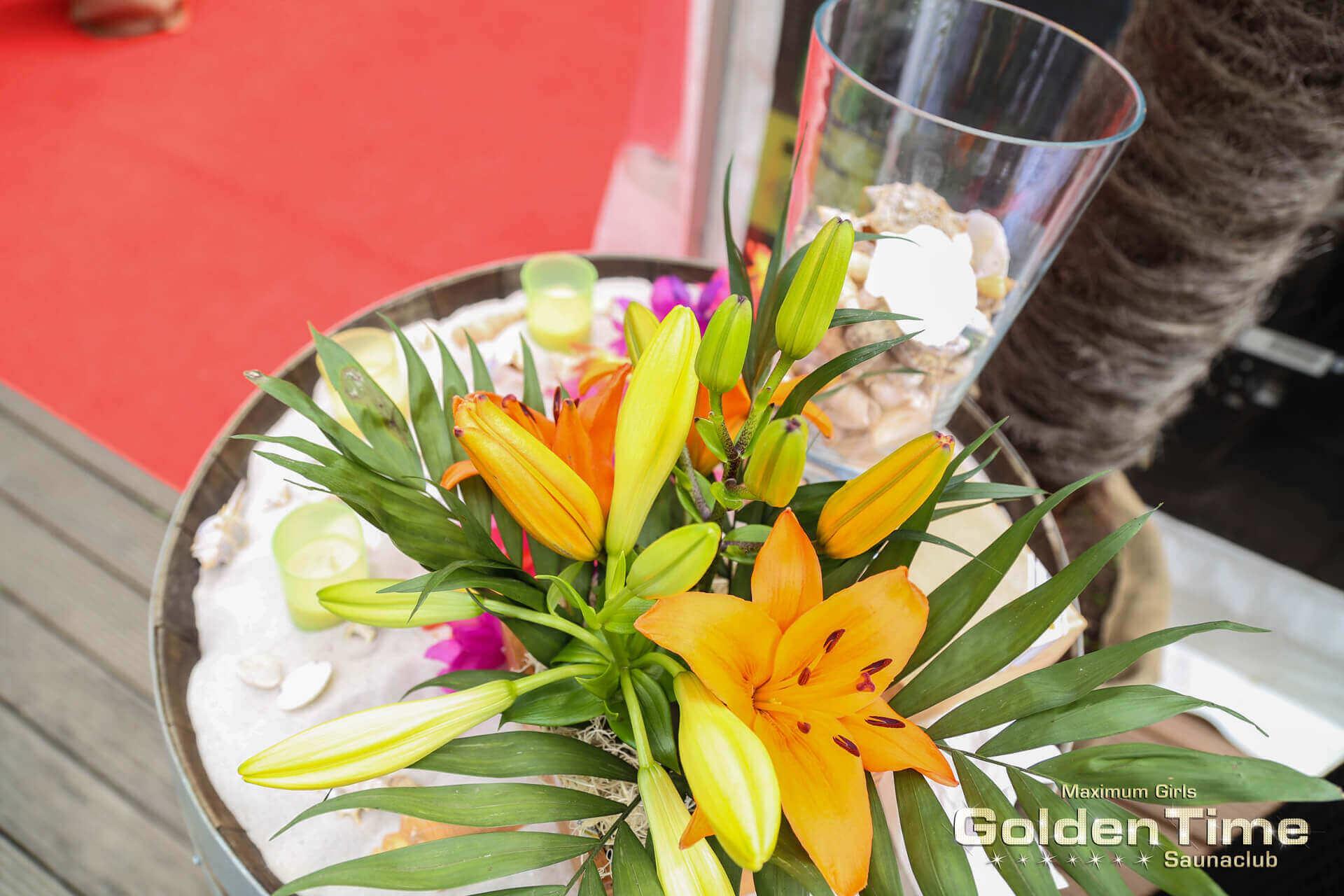 havanna-summer-goldentime-fkk-saunaclub-(19-von-209)-web.jpg